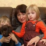 Labrador retriever De Anrit Dinastiya and Harrypotter of Lucifers Delight puppies CHEERY FAIRY BASTETA